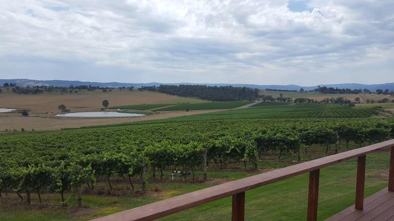 Yarra Valley Winery Tour from Melbourne Including Lunch and Yarra Valley Chocolaterie