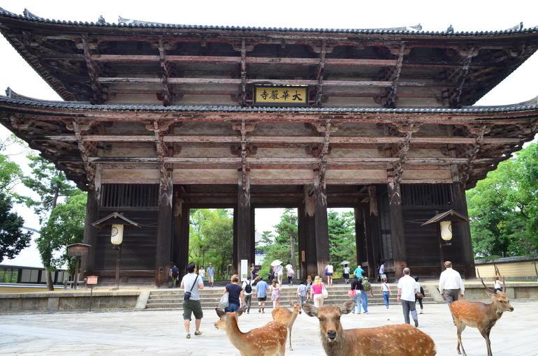 DSC_1416 - Kyoto