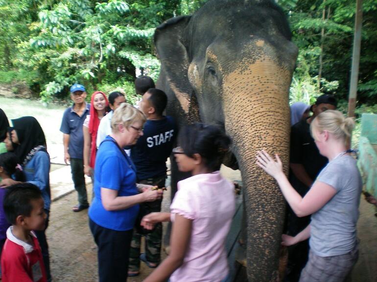 Elephant Sanctuary - Kuala Lumpur