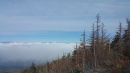 Surrounded by a sea of clouds on the way to the 5th station : , Tesa - November 2015