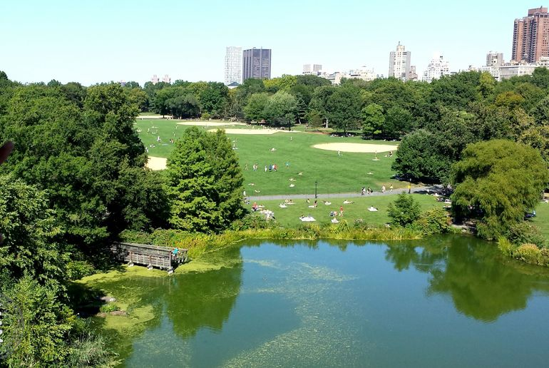 NYC Central Park Bike Rental photo 25