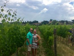 Our driver pulled over for pictures in the vineyard , leeanne.stell - June 2017