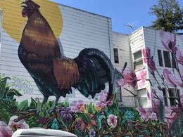 one example of a mural in the Mission District. , Ellen B - August 2017