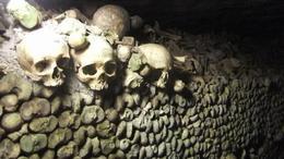 estimated 6 million bones & skulls, Ana M L - August 2010
