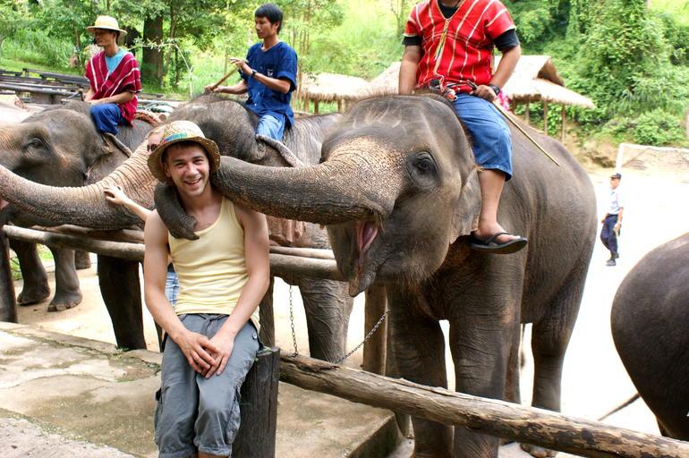 Elephant fun! - Chiang Mai