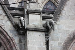 Instead of the traditional gargoyles that Gothic style churches had, these architects used local Ecuadorian animals!, Bandit - October 2013