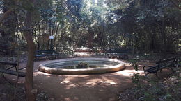 Botanic garden , Anna S - June 2016