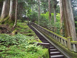 Amazing moss covered stairway. , bluntman19 - July 2016