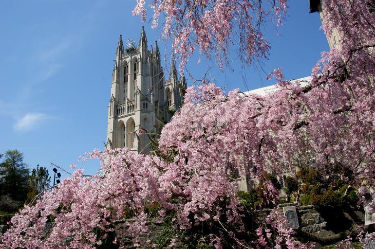 cathedrale-nationale-de-washington