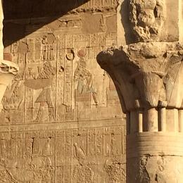on the second day of the cruise we visited the temple of Edfu , Fatma A - December 2014