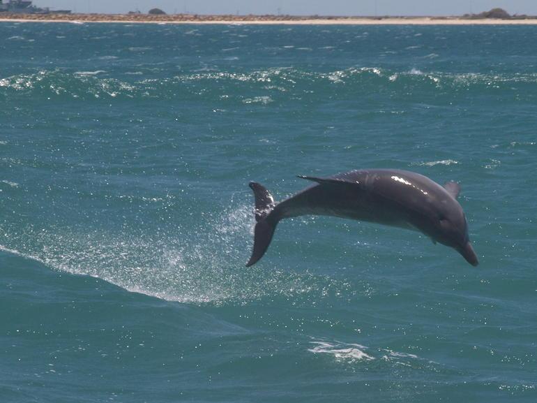 15-15-2012 - Perth