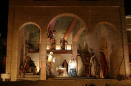 I have seen nativity scenes in many of the cities in the United States. This, by far, is the most exquisite site to behold. It is a must see for everyone., Rosalyn H - January 2008