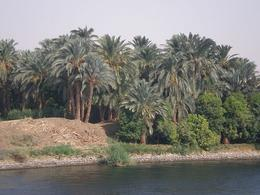 Scenery along the Nile - May 2008