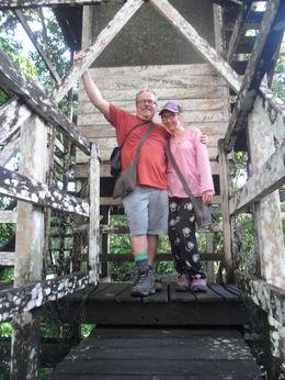 Eco centre near Puerto Maldonado up in the rain-forest treetop walkway , andrew c - June 2016