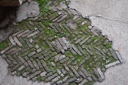 Part of the original Colosseum floor. , Linda J - January 2018