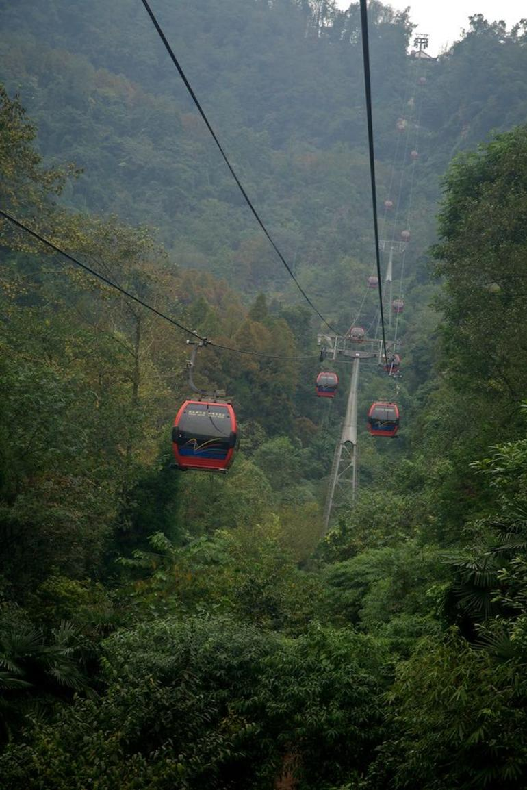 Qingcheng Mountain and Dujiangyan Irrigation System Day Trip from Chengdu photo 28