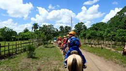Our trail of horses on the ride to the forest and cave entrance. , Allan - September 2015