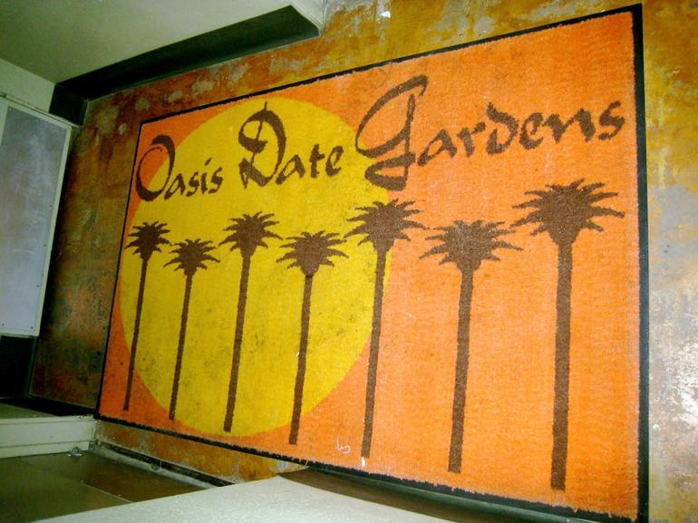 Oasis Date Rug - Palm Springs