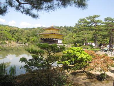 Kyoto Morning Tour of Kinkakuji Temple, Nijo Castle and ...
