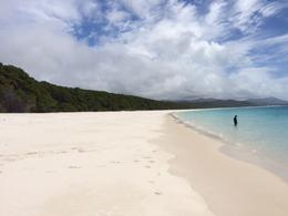 Beautiful Whitehaven beach , erinrosejonasson - September 2016
