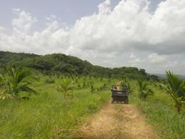 plantation , kelle r - July 2014