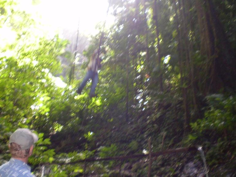 Ranger swinging from vine - St Lucia