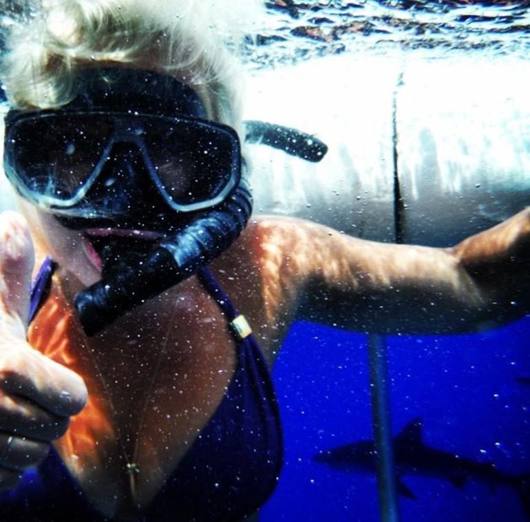 plongee-aventure-requins-oahu