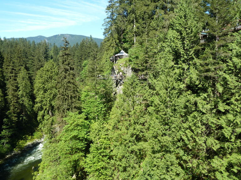 North Shore Day Trip from Vancouver: Capilano Suspension Bridge & Grouse Mtn