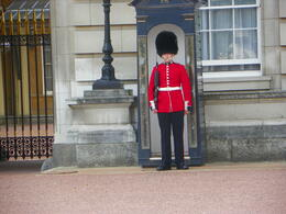 Royal Guard in front of Buchingham palace. , Jimmy T - October 2011