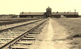 Entrance to Birkenau , stef - June 2015