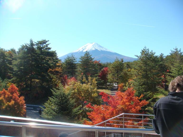 Autumn View of Mount Fuji - Tokyo