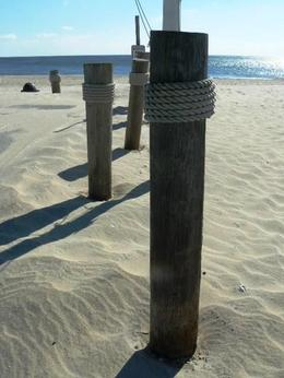 Coopers beach , Mrs Rowe - November 2011