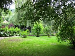 The green garden in July, Heikki T - July 2009