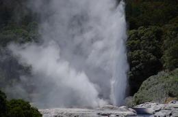 Rotorua , Michael C - February 2017