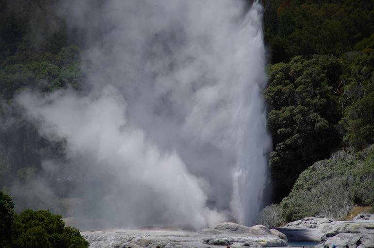 Tauranga Shore Excursion: Lord of the Rings Hobbiton Movie Set Tour Including Rotorua Sightseeing