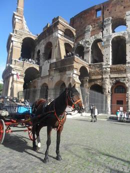 a caballo por el coliseo , Oriana Soledad S - November 2013