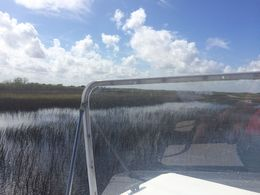 View of the Everglades from the front of the airboat , Kiara O - February 2016