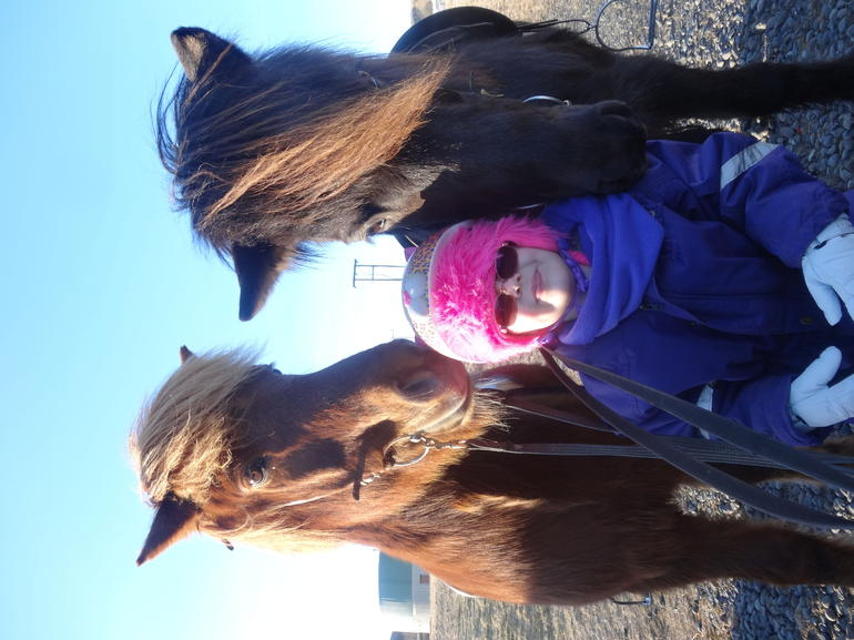 Viking Horse Riding and Golden Circle Tour from Reykjavik photo 33
