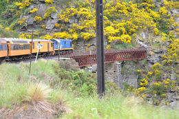 Crossing one of the many bridges over tributaries of the Taieri River , Margaret R - March 2015