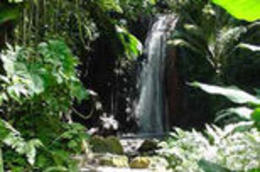 Soufriere Island Delight - March 2012