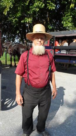 Amish Chauffer , shaun c - November 2016