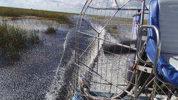 Our air boat going full steam ahead, very exhilarating. , Paulette R - November 2013