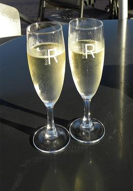 When we arrived back at Rochford Winery, trays of champagne were awaiting us! - March 2010