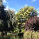 Con una percha en el río Avon con visita opcional a Christchurch en góndola y excursión por los Jardines Botánicos, Christchurch, NUEVA ZELANDIA