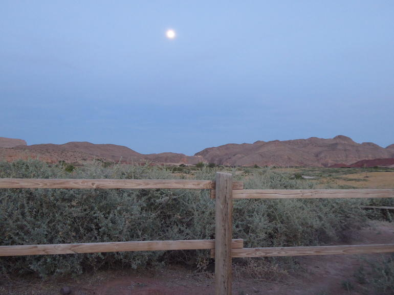 Wild West Sunset Horseback Ride with Dinner from Las Vegas photo 24