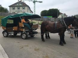 Our horse and carriage we rode in on the way down from the castle. , Dee P - July 2017