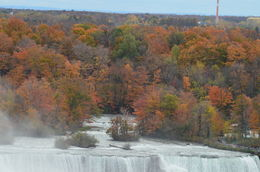 Niagara Falls im Oktober , Michaela G - November 2015
