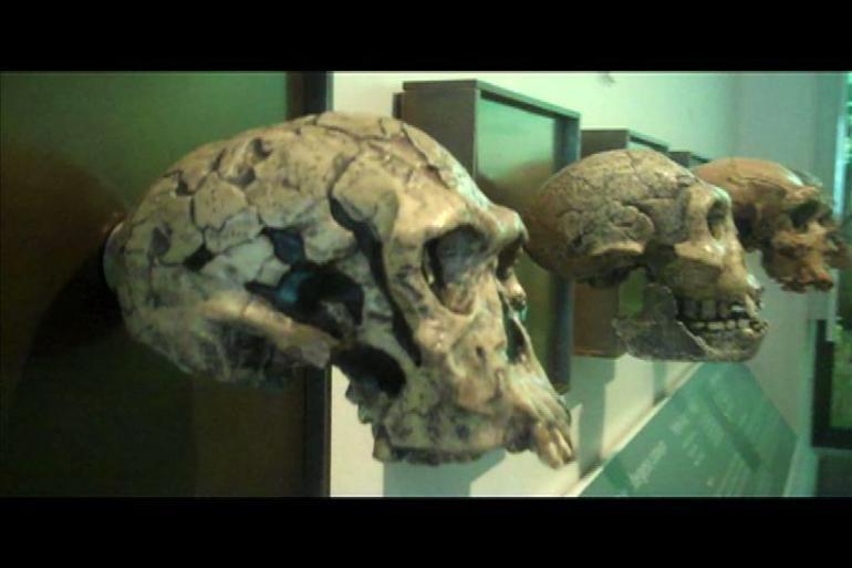 Skulls - San Francisco