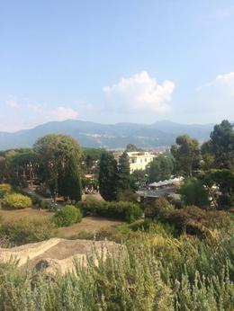 on the slopes of Vesuvius , Dana D A - September 2016
