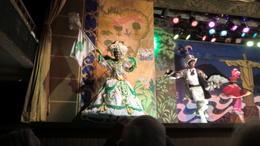 Samba show , Walter C - March 2012